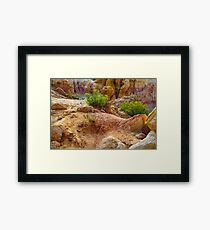 Geological Playground Framed Print
