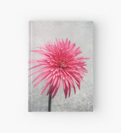 Two Hardcover Journal