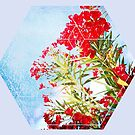 Nature and Geometry - Flowers by Denis Marsili