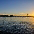 Valetta Sunset by Lisa Williams