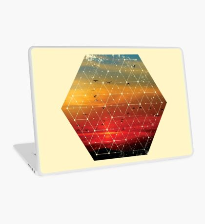 Nature and Geometry Flying Birds Laptop Skin