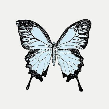 Butterfly by SMalik