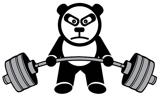 Weightlifting Panda Bear Poster By Mchanfitness Redbubble
