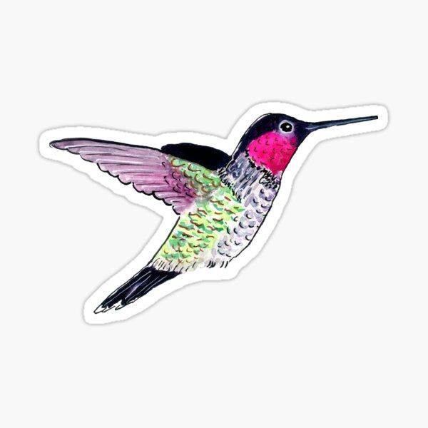 Little Hummingbird 1 Sticker