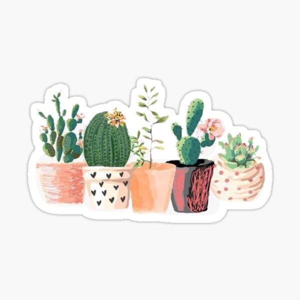 Aesthetic  Sticker