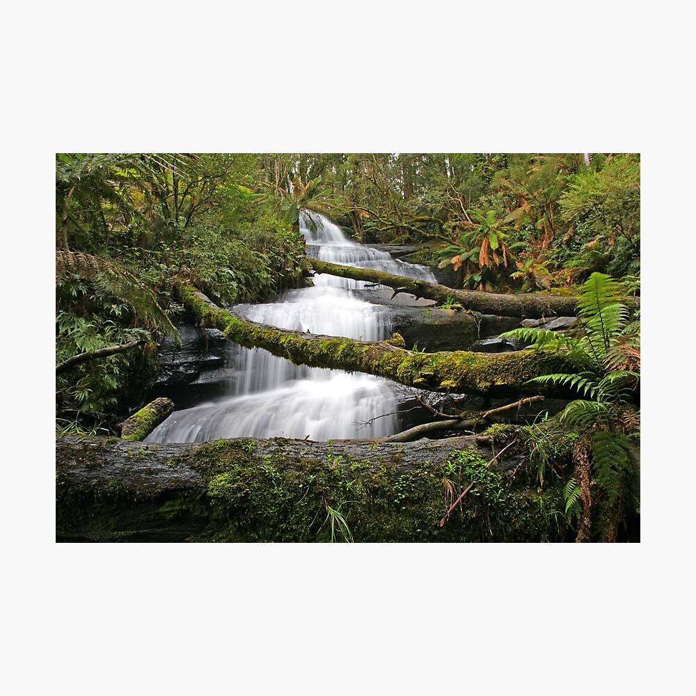 Triplet Falls, Otways, Australia Photographic Print