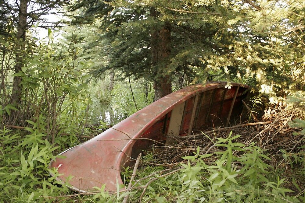 Old Canoe by SarahEricD