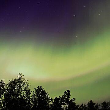 Northern Lights by erickson16