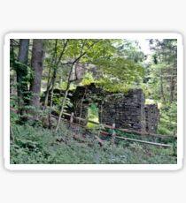 Ruins of Joseph Brooks' 19th century Woolen Mill Sticker