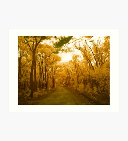 Midas Lane Art Print