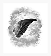 Angel wing, Gray-scale Photographic Print