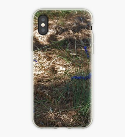 Hovea in the Shadow iPhone Case