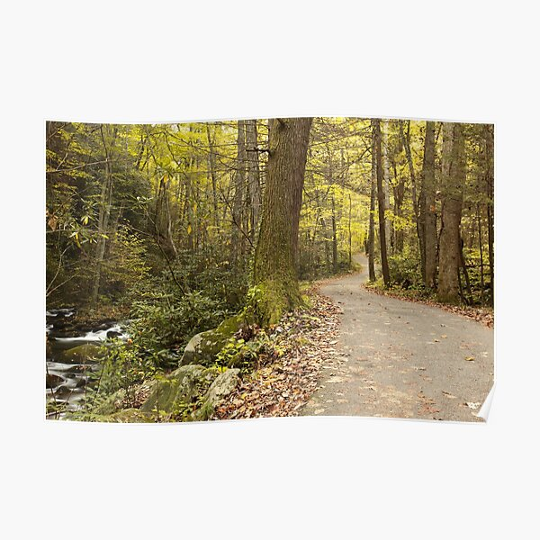 Roaring Fork Nature Trail   Poster