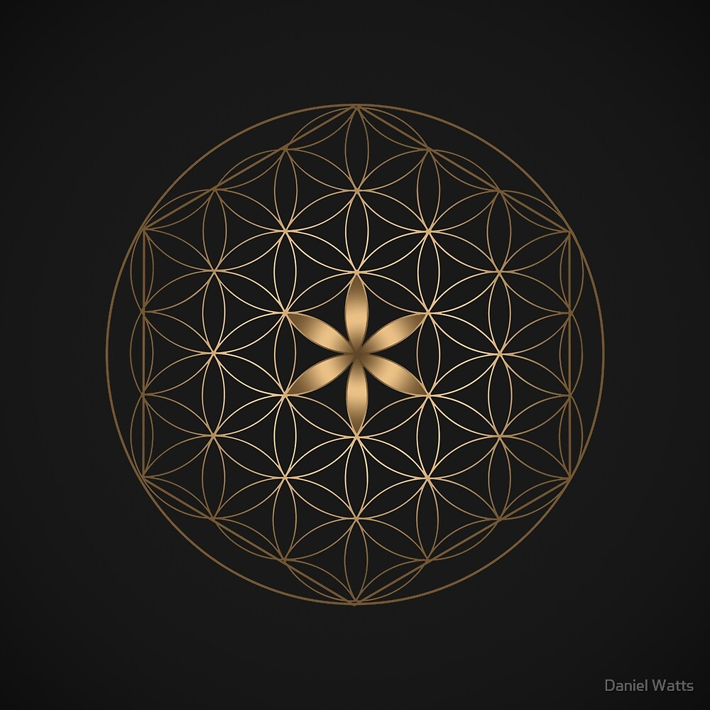 The Flower Of Life by Daniel Watts