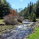 Truro Nova Scotia Canada by AnnDixon
