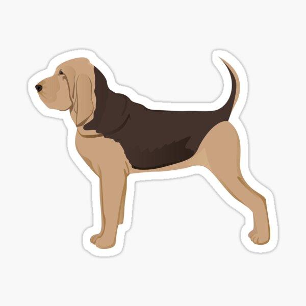 Bloodhound dog Sticker