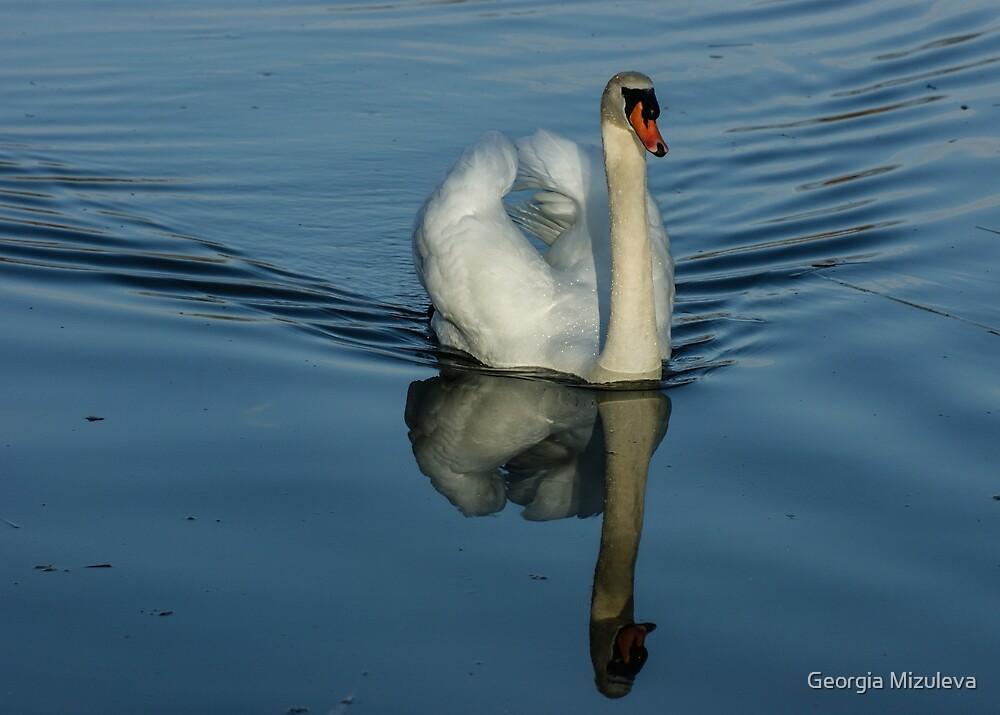 Swan Symmetry -  Graceful Cygnus Olor by Georgia Mizuleva