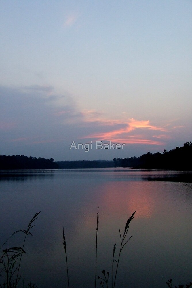 One Summer Evening by Angi Baker