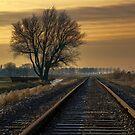 Rail Away  by Johanna26