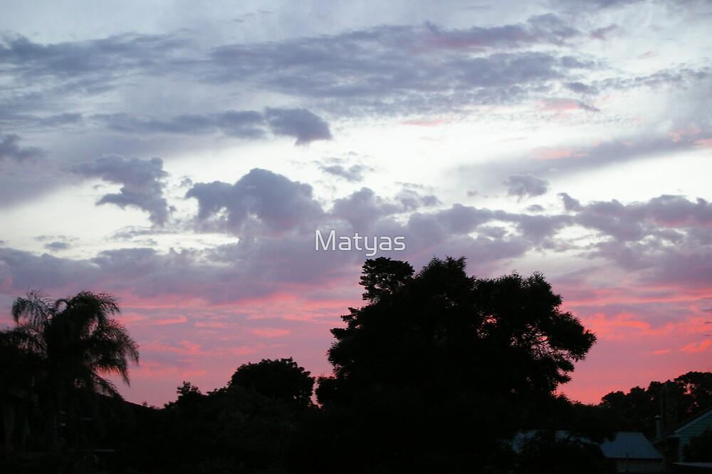 Drifting Pink by Matyas