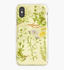 HD Vintage flowery bouquet design number 10 ~ iPhone Case/Skin