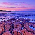 Bayside Dawn by Sam Sneddon