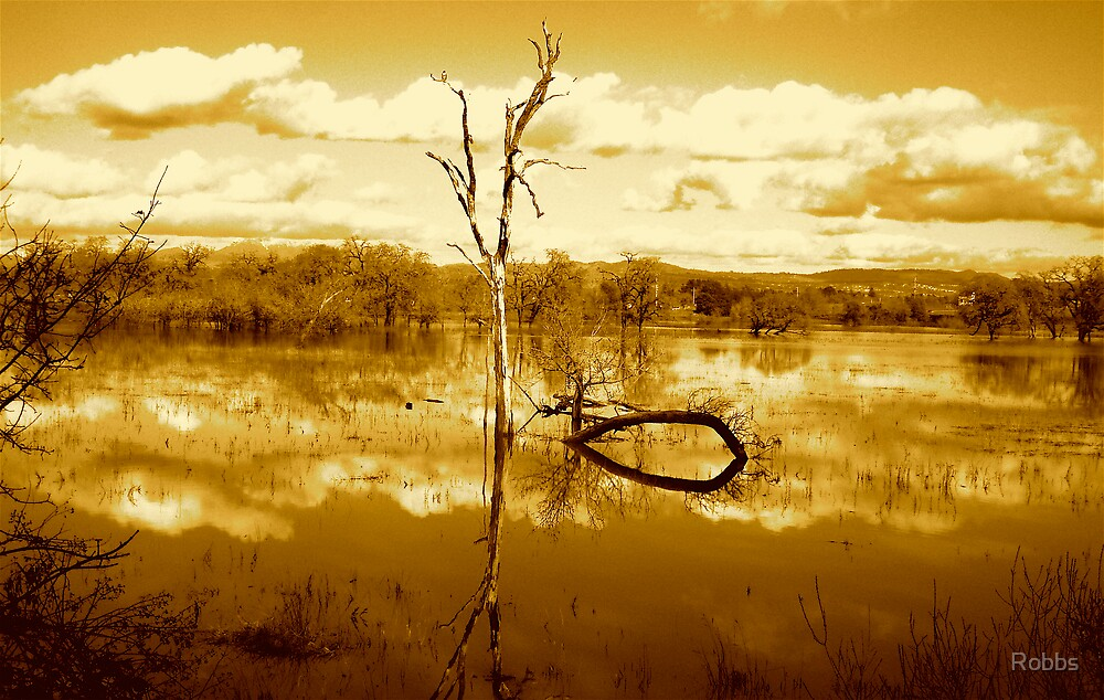 Flood Water by Robbs