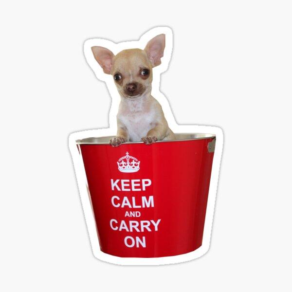 Westie Placa-Keep Calm Y Abrazo Novedad Regalo Divertido presente un