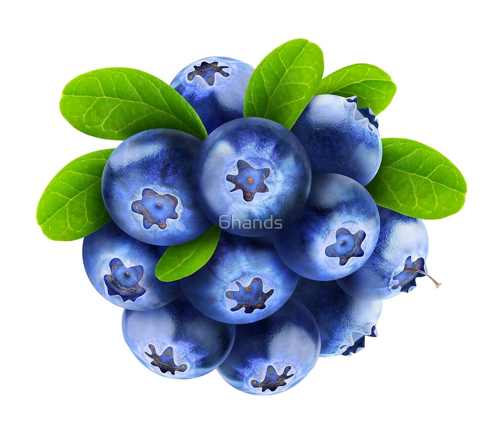 Blueberries by 6hands