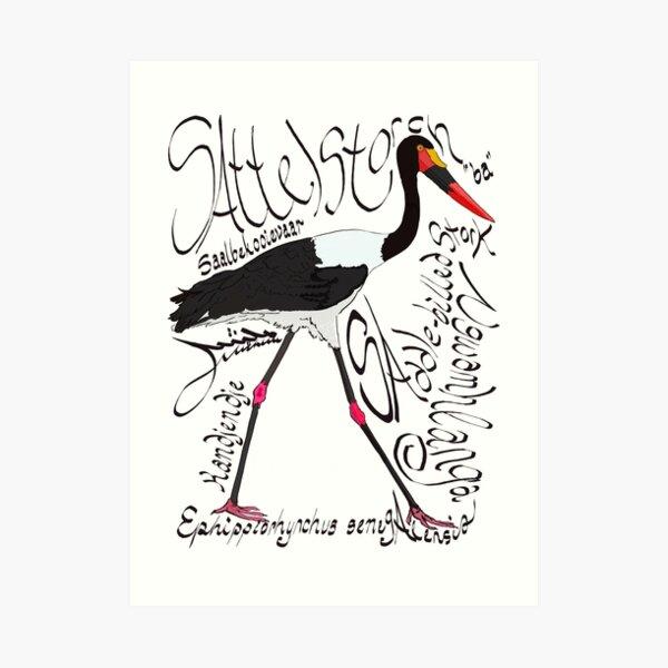 Saddle-billed Stork, Saalbekooievaar Art Print