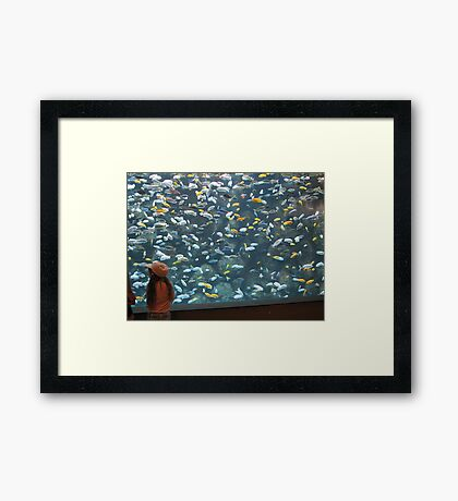 Now That's A Fish Tank!!!! Framed Print