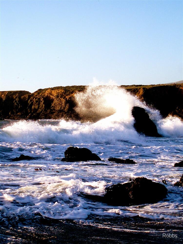 Northern California Beach by Robbs