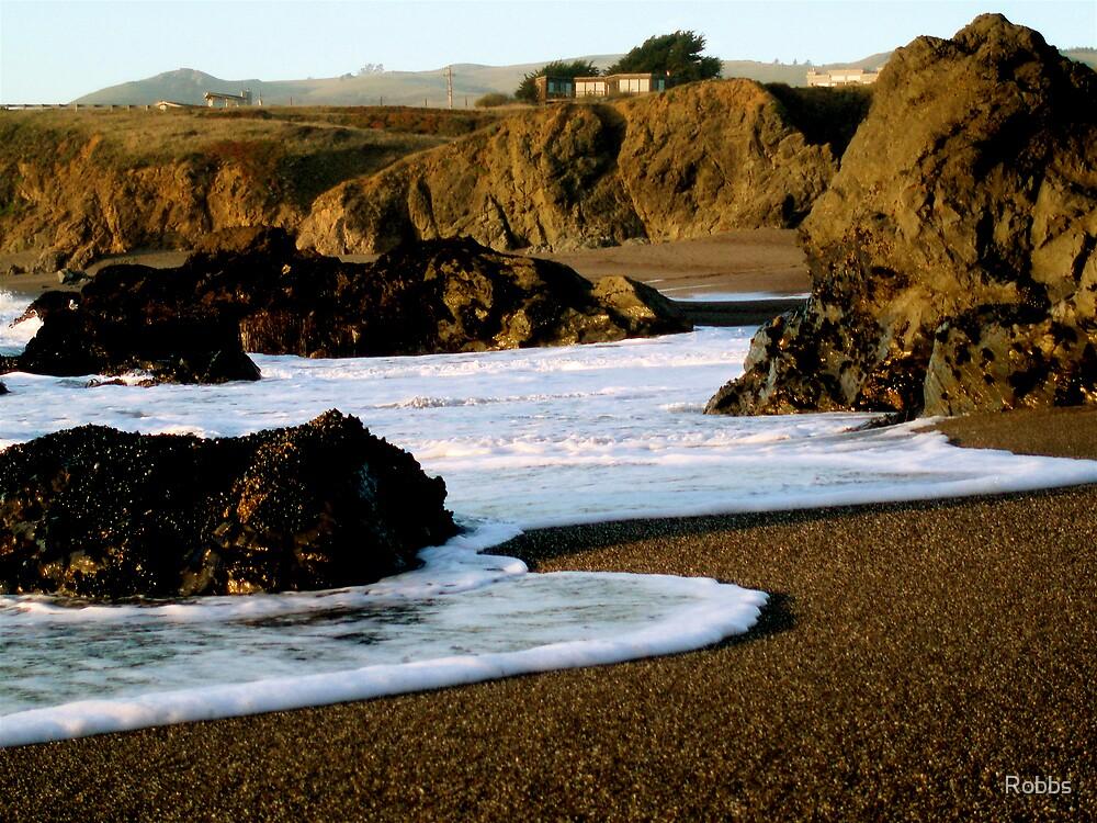 Foamy Beach by Robbs