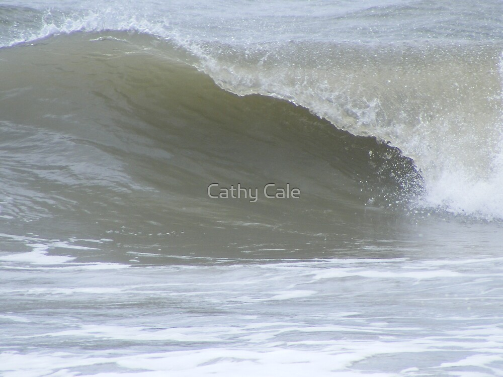 BIG WAVE by Cathy Cale