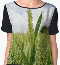 barley crop Women's Chiffon Top
