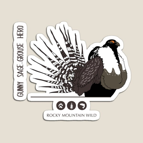 Gunny Sage-Grouse Hero Magnet