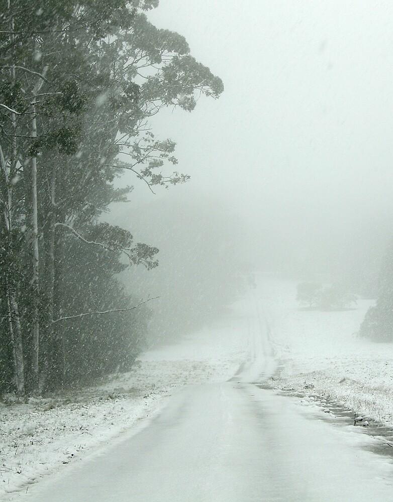 Snow on Mt Macedon by AUSSKY