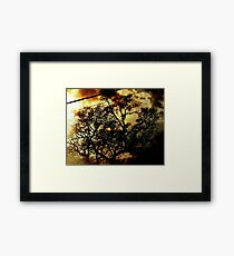 Before the Summer Storm Framed Print