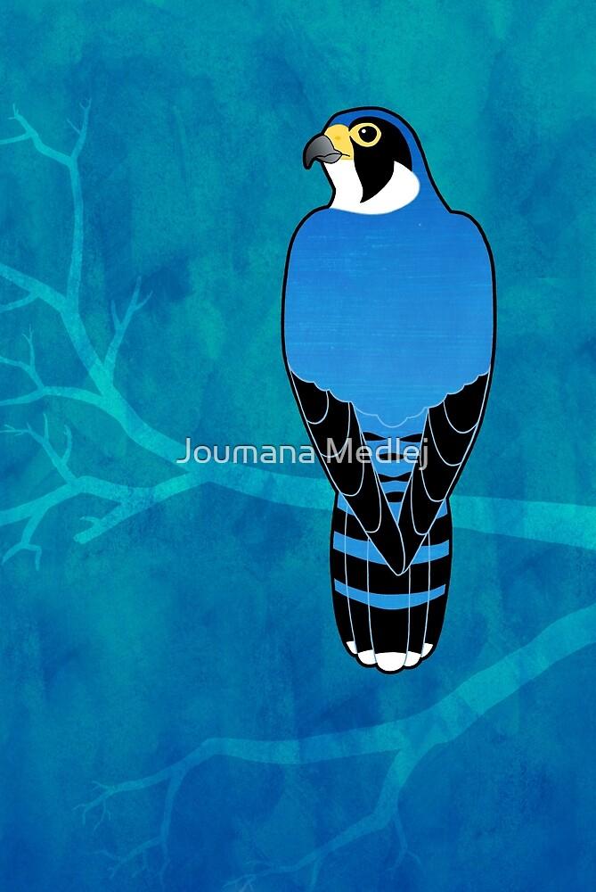 Peregrine Falcon (Falco peregrinus) by Joumana Medlej