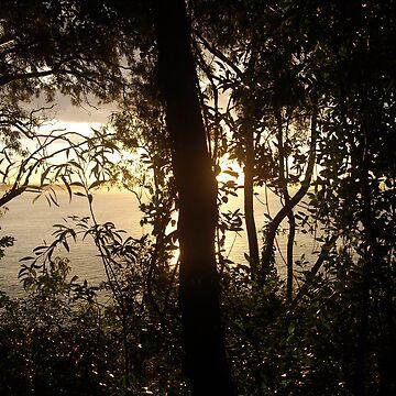 Noosa Sunset by nattyb