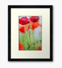 Past, present and future Framed Print