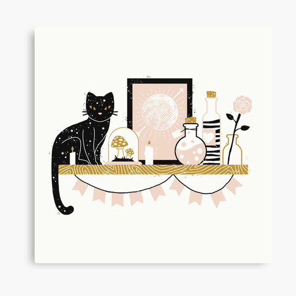 Magical Little Shelf Canvas Print