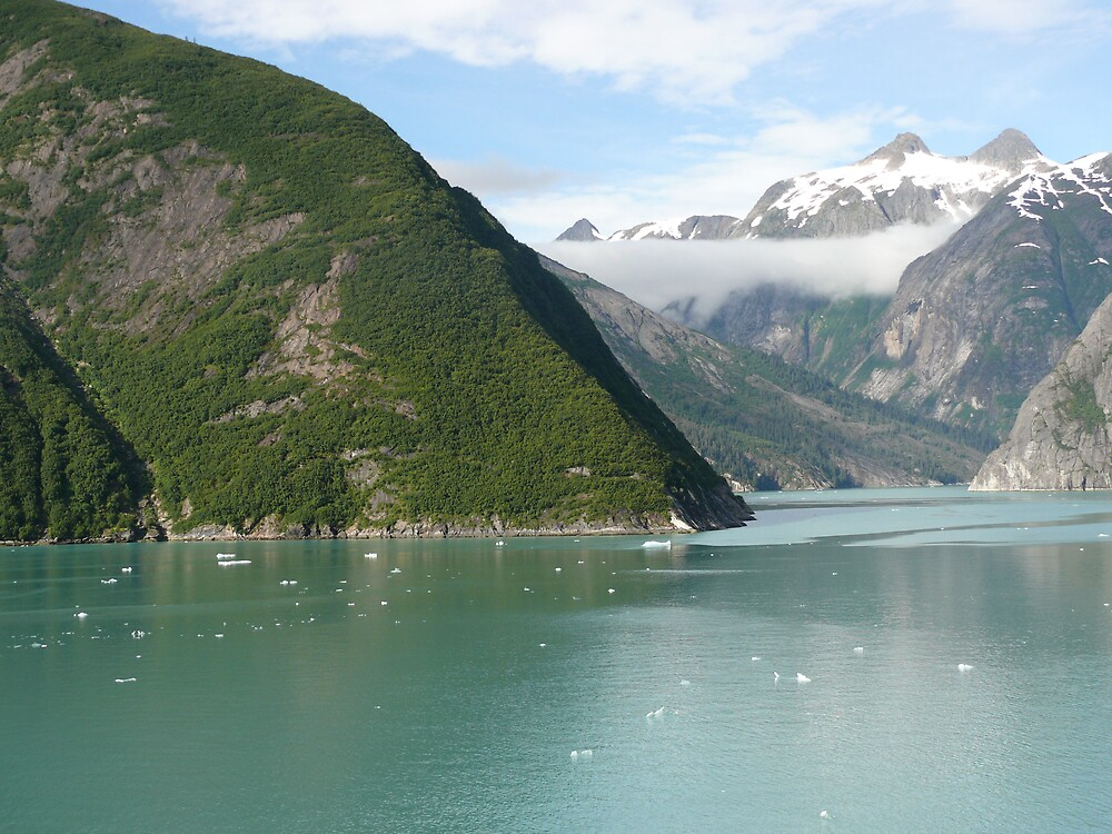 The First Day of August 2007 Cruise, Alaska by Liz Wear