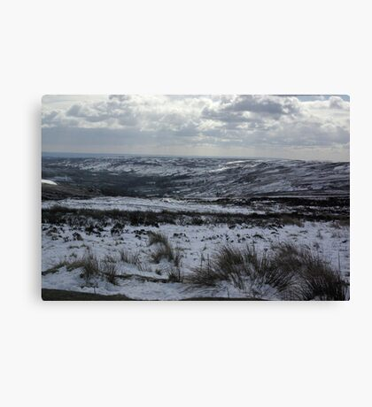 Rosedale in Winter Canvas Print