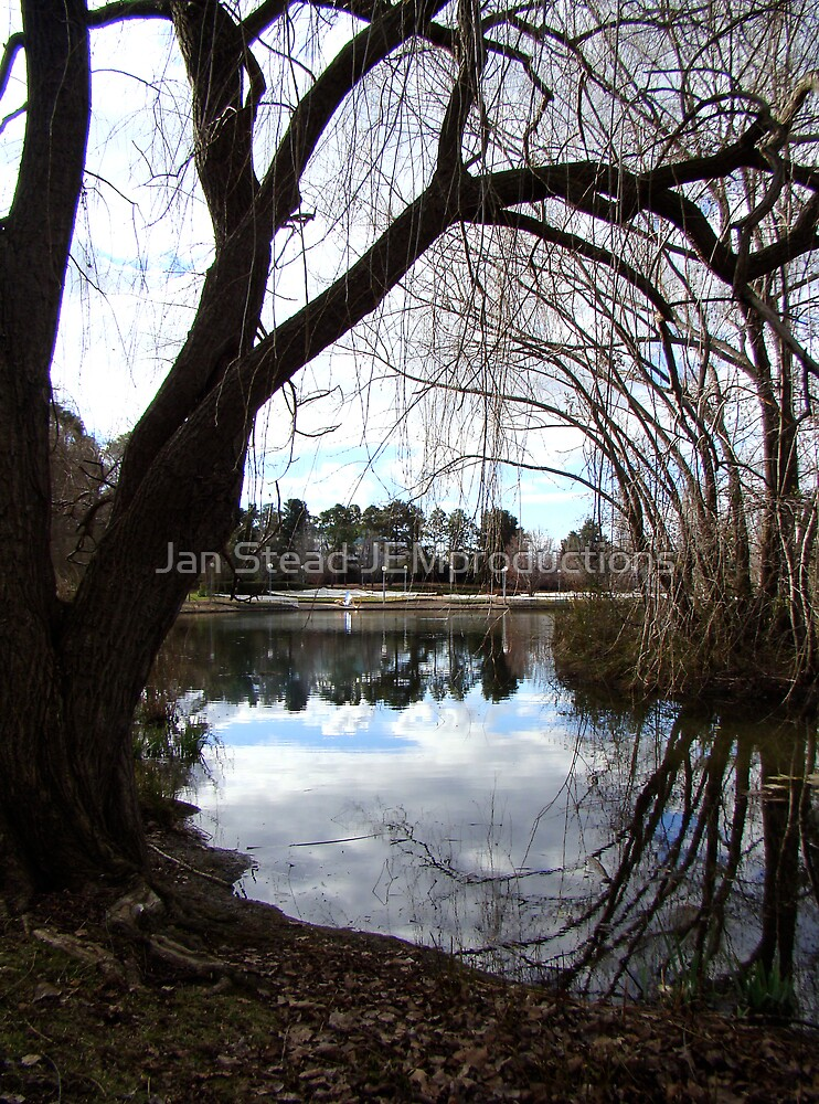 on reflection by Jan Stead JEMproductions