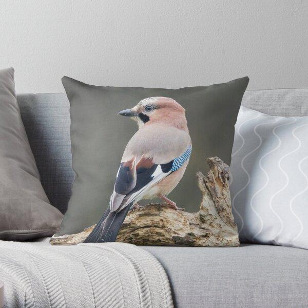 Eurasian Jay #1 Throw Pillow