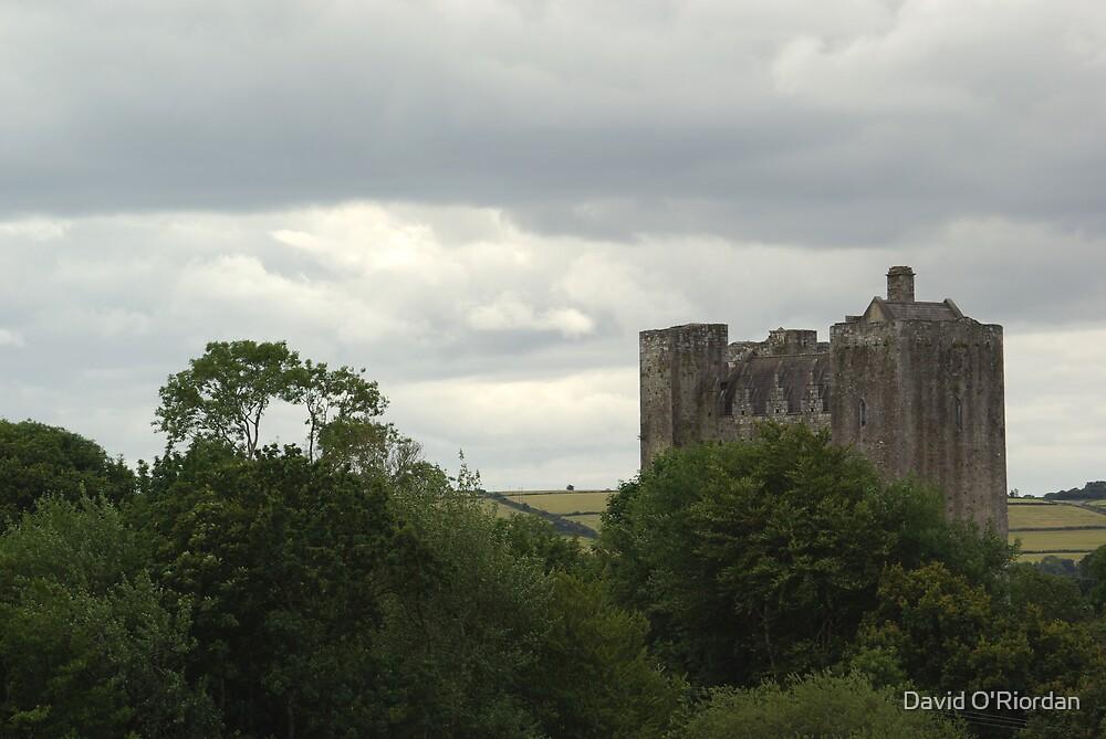 Barryscourt Castle by David O'Riordan