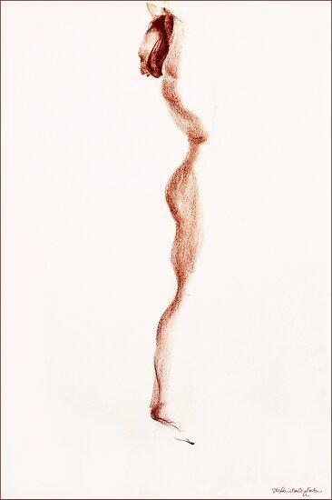 Singularity by Stephen Gorton