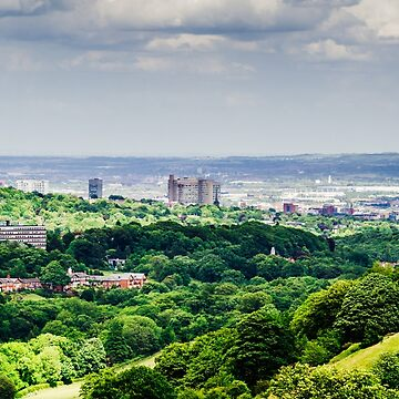 Sheffield, City in the Trees by shanerounce