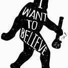 «quiero creer» de kushcoast